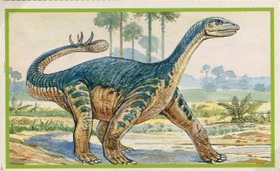 63 N PANINI sticker-dinosauri come me!